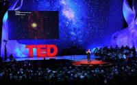 TED Matamoros